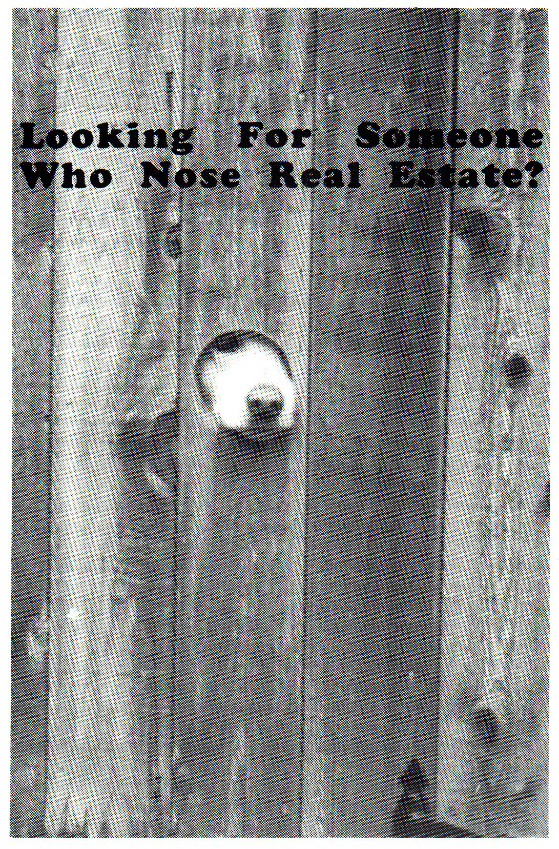 Malo Nose Real Estate! - Ken Malo Real Estate